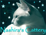 Nashira_banner3