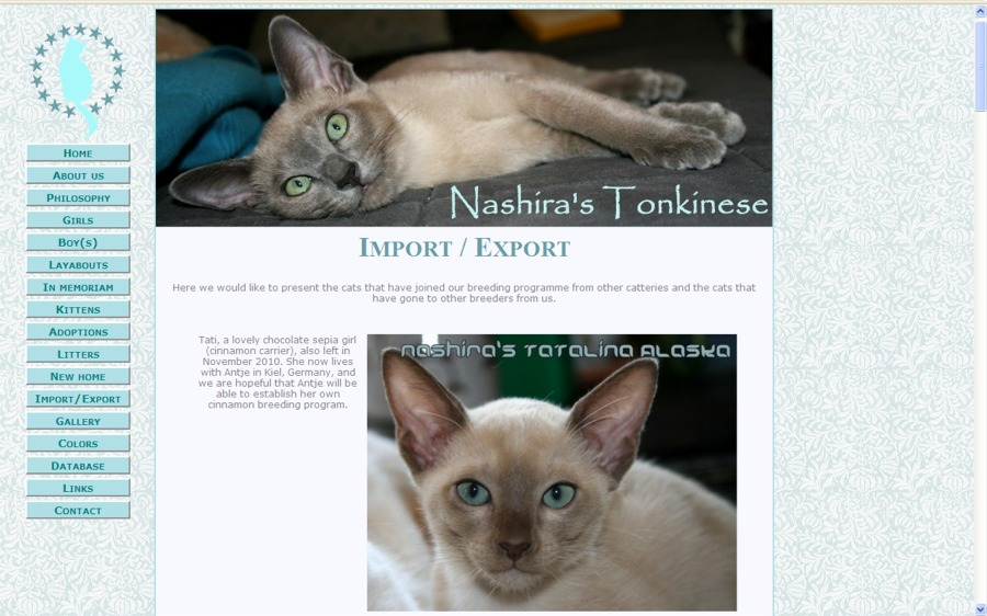 Nashira's Tonkinese