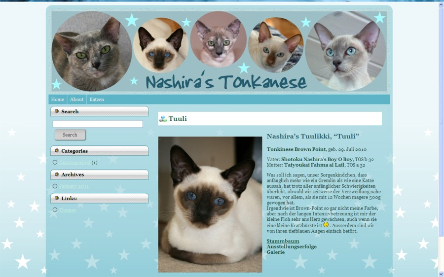 Nashira WordPress