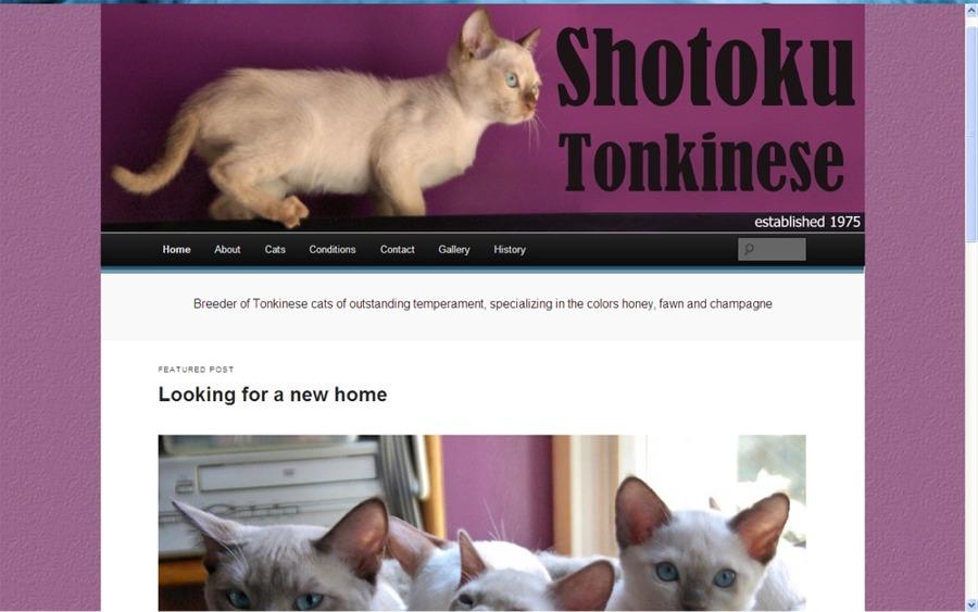 Shotoku (WordPress)
